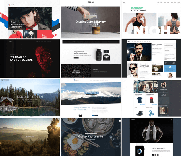 YooTheme Pro Wordpress Templates